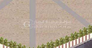 غرس أشجار داخل مقبرة قمار